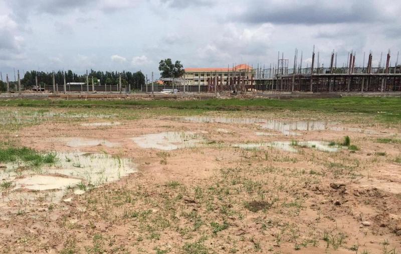 Theo dự báo, qua Tết âm lịch, đất nông nghiệp sẽ tăng giá