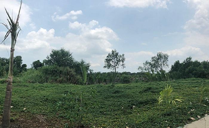 Mới đây, Thành ủy Tp.HCM vừa yêu cầu hủy hợp đồng mua bán khu đất công 32ha ở Phước Kiển (huyện Nhà Bè).