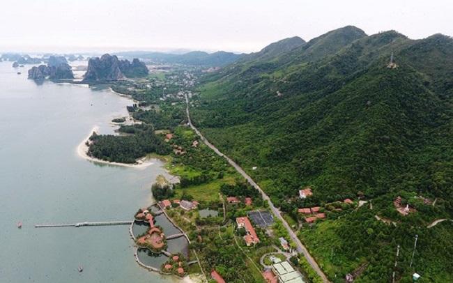 Chính quyền địa phương tại Quảng Ninh, Khánh Hoà cũng như Kiên Giang vừa đề xuất xem xét cho Vân Đồn, Bắc Vân Phong và Phú Quốc tiếp tục thực hiện các thủ tục đất đai