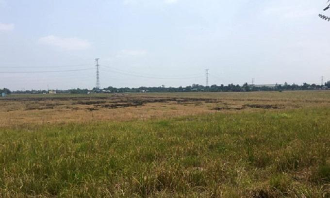 Đất nền càng xa trung tâm TP HCM, được dự báo càng có biên độ tăng giá cao trong năm 2019.