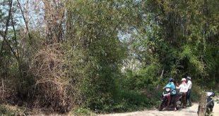 Mảnh vườn 100 m2 ở nông thôn được cò đất hỏi mua với giá hơn 800 triệu đồng.