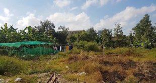 Khu đất quy hoạch tại Đại học Quốc gia TP.HCM bị Công ty Angle Lina và Công ty Hoàng Ân Group lấy đất đi bán.