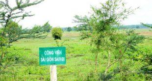 Công viên Safari Sài Gòn được kêu gọi đầu tư sau mấy chục năm bỏ hoang. Ảnh: UBND TP HCM.