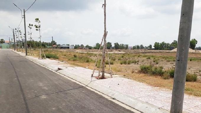 Một dự án khu dân cư mới làm con đường ở giữa và trồng hàng cây đã tổ chức phân lô bán nền