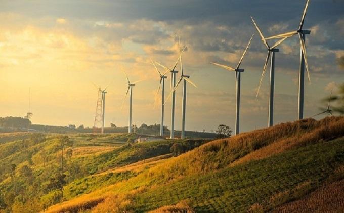 Điện gió là một trong những lĩnh vực giàu tiềm năng phát triển tại Bình Thuận.