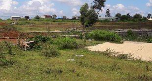 Chỉ định giao đất công được coi là nguy cơ của tham nhũng